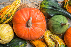 Jesieni rama od dekoracyjnych bani Zdjęcia Stock