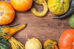 Jesieni rama od dekoracyjnych bani Zdjęcie Stock