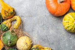 Jesieni rama od dekoracyjnych bani Obrazy Royalty Free