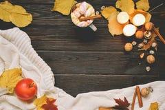 Jesieni rama robić wysuszeni spadków liście, kubek kakao z marshmellows, dokrętki, cynamon, szkocka krata, jabłka Odgórny widok n Zdjęcie Royalty Free