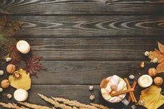 Jesieni rama robić wysuszeni spadków liście, kubek kakao z marshmellows, dokrętki, cynamon, szkocka krata, jabłka Odgórny widok n Obrazy Royalty Free