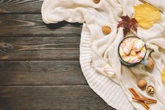 Jesieni rama robić wysuszeni spadków liście, kubek kakao z marshmellows, dokrętki, cynamon, szkocka krata, jabłka Odgórny widok n Fotografia Royalty Free