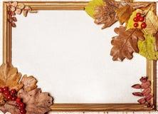 Jesieni rama z żółtymi liśćmi Zdjęcia Royalty Free