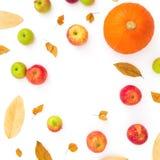 Jesieni rama z spadków liśćmi, jabłkami i pomarańczową banią na białym tle, Dziękczynienie Dzień Mieszkanie nieatutowy, odgórny w Fotografia Stock