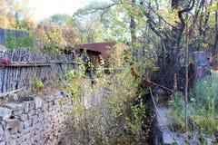 Jesieni rośliny wzdłuż ściany Fotografia Royalty Free