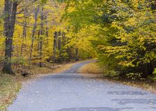 jesienią road Fotografia Stock
