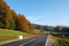 jesienią road Zdjęcia Royalty Free