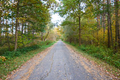 jesienią road Zdjęcia Stock