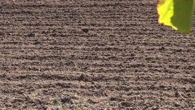 Jesieni rolnego pola ziemia po kultywaci zbiory