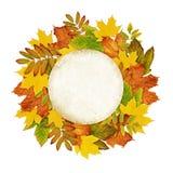 Jesieni round rama od suchych barwionych liści Fotografia Royalty Free