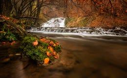 Jesieni rzeka Zdjęcia Royalty Free