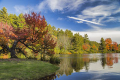 Jesieni rzeka Obrazy Royalty Free