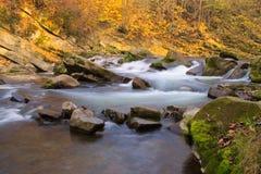 Jesieni rzeka Obraz Royalty Free