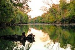 Jesieni rzeka zdjęcie stock