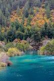 Jesieni rzeka Jiuzhaigou, porcelana Obrazy Stock