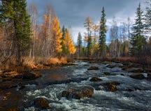 Jesieni rzeka Olha Fotografia Royalty Free