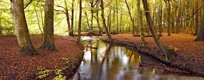 jesienią rzeki obrazy stock