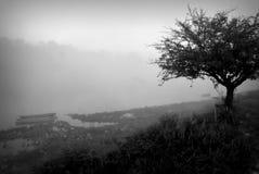 Jesieni rzeki czarny i biały krajobraz Zdjęcia Stock