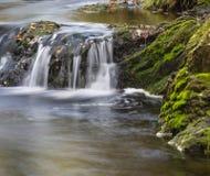 Jesieni rzeki Długi ujawnienie, Belgia Zdjęcia Royalty Free