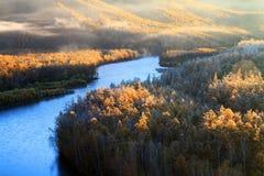 Jesieni rzeki drzewo Obraz Royalty Free
