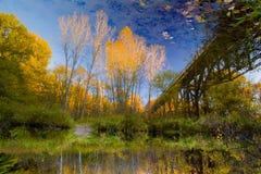 Jesieni rzeki odbicia Zdjęcia Royalty Free