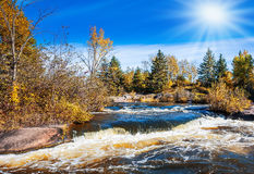 Jesieni słońce Obrazy Stock