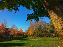 Jesieni ` s krajobraz Obrazy Stock