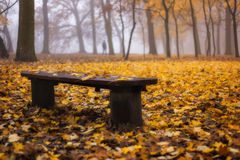 Jesieni samotność Obrazy Royalty Free