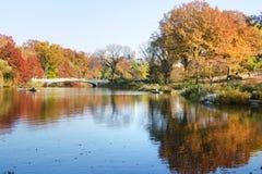 Jesieni scena centrala park w Nowy Jork, usa Fotografia Royalty Free