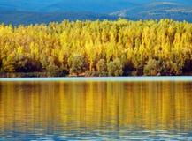 Jesieni scena z jeziorem i lasami Obrazy Stock