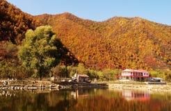Jesieni sceneria Zdjęcia Stock