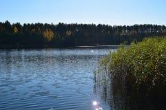 Jesieni sceneria w Latvia, Europa Fotografia Royalty Free