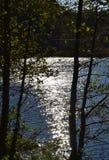 Jesieni sceneria w Latvia, Europa Zdjęcie Stock