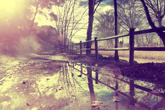 Jesieni sceneria, wiejska droga i kałuża, zdjęcie stock
