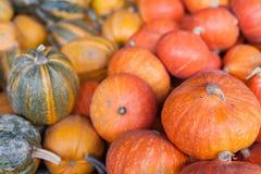 Jesieni sezonowy żniwo banie obrazy stock