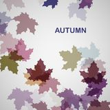 Jesieni sezonowy tło Zdjęcia Stock
