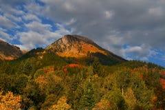 jesienią splender Obraz Stock