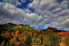 jesienią splender Fotografia Royalty Free
