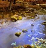 jesienią spokojna rzeka fotografia royalty free