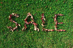 Jesieni sprzedaż z czerwonymi liśćmi Obrazy Stock