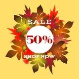 Jesieni sprzedaże plakatowe z pięknym literowaniem ilustracji