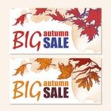 Jesieni sprzedaży klonu gałąź sztandaru set Zdjęcia Royalty Free