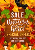 Jesieni sprzedaży oferty plakat z sezonu jesiennego liściem Obrazy Stock