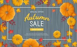 Jesieni sprzedaży sztandar Horyzontalny tło z banią, liście przy prostokątną ramą na drewnianym stole Fotografia Royalty Free