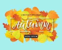 Jesieni sprzedaży sztandaru Modny szablon z Kolorowym spadkiem Opuszcza na jaskrawym modnym błękitnym tle Zdjęcia Stock