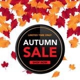 Jesieni sprzedaży sztandaru szablon z liśćmi, spadek opuszcza dla robić zakupy sprzedaż Sztandaru projekt Plakat, karta, etykietk ilustracja wektor