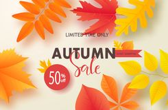 Jesieni sprzedaży tła układ dekoruje z liśćmi dla robić zakupy plakat, ramy sieć i ulotkę sprzedaży lub promo lub sztandar royalty ilustracja