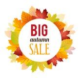 Jesieni sprzedaży tło Zdjęcia Royalty Free