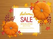 Jesieni sprzedaży tło Horyzontalna sztandar ulotka z banią, liście na drewnianej stołowej Specjalnej sezonowej ofercie Obraz Royalty Free