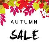 Jesieni sprzedaży tło z rocznika kolorowym urlopem, wektorowy illus Zdjęcia Stock
